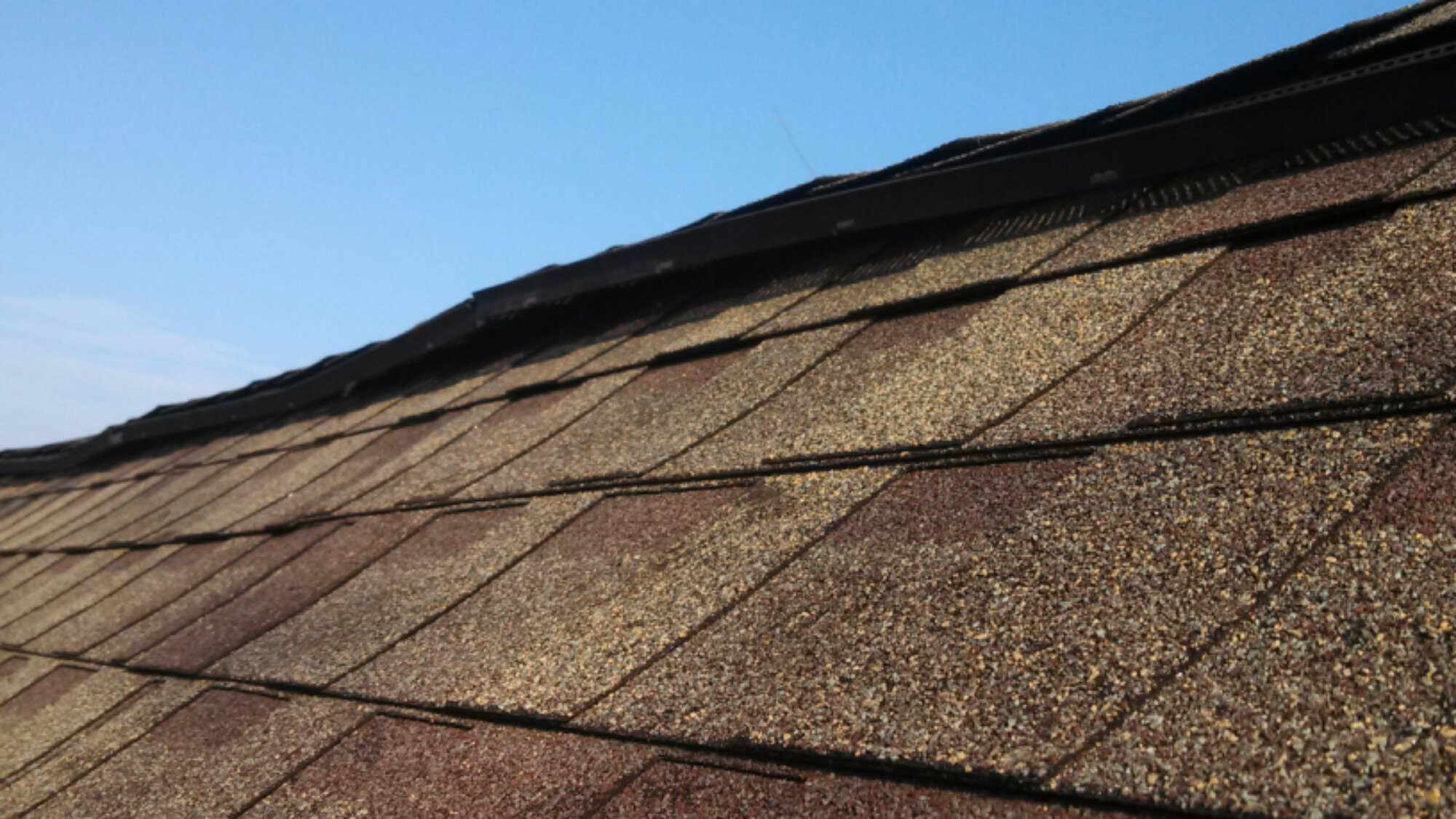 Get Rid Of Bats In Attic Roof Vents Grand Blanc 48439