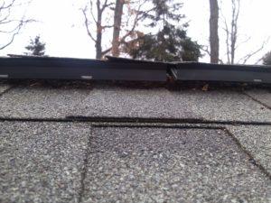 Bats Getting Into Ridge Vents