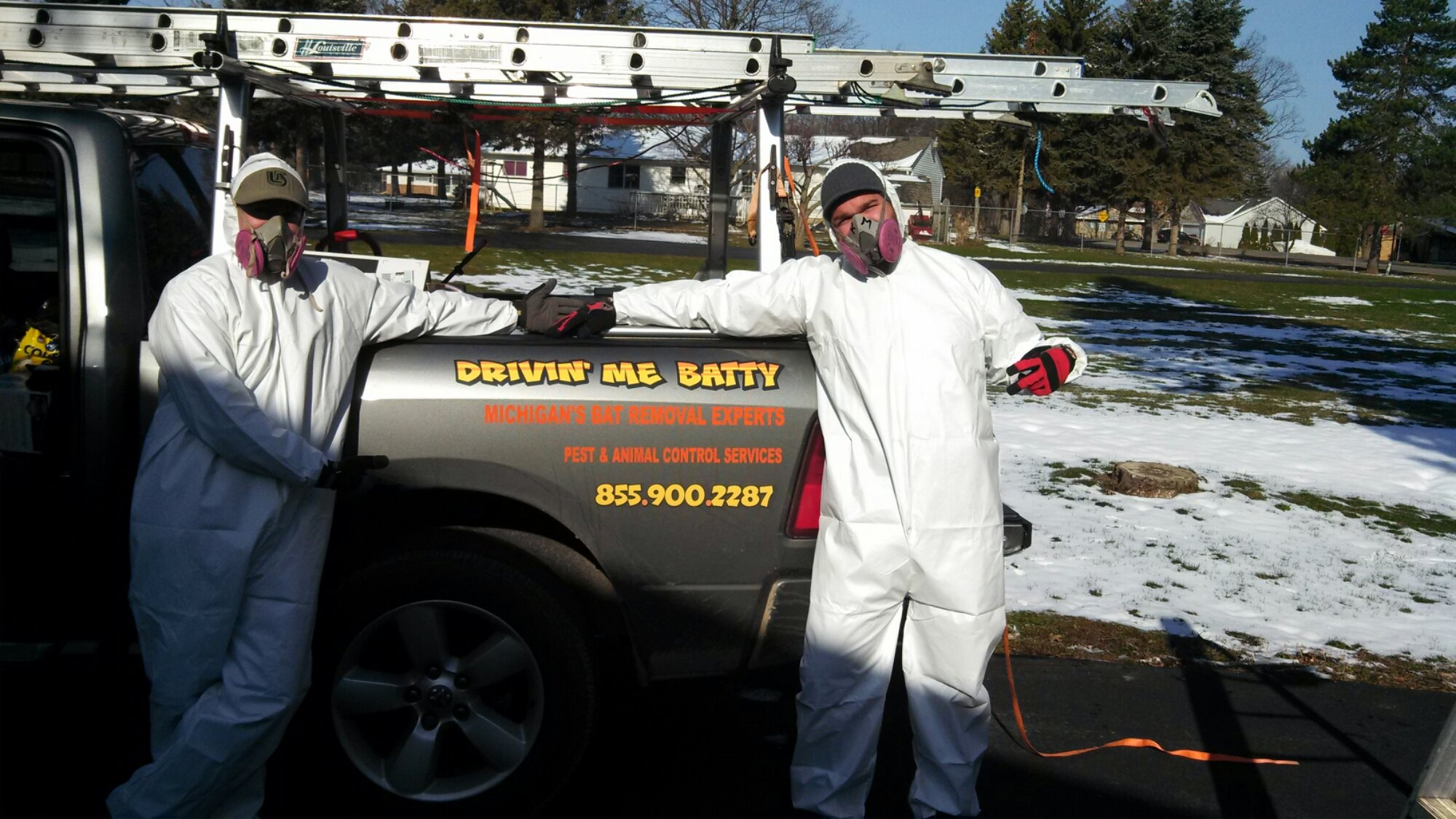 Bat Guano Removal And Mold Remediation Services Image